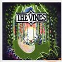 Highly evolved / The Vines, gr. voc et instr.   VINES (THE). Interprète