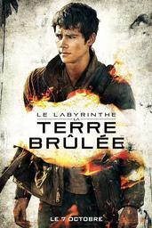 Le Labyrinthe / Wes Ball, réal. | BALL, Wes. Monteur
